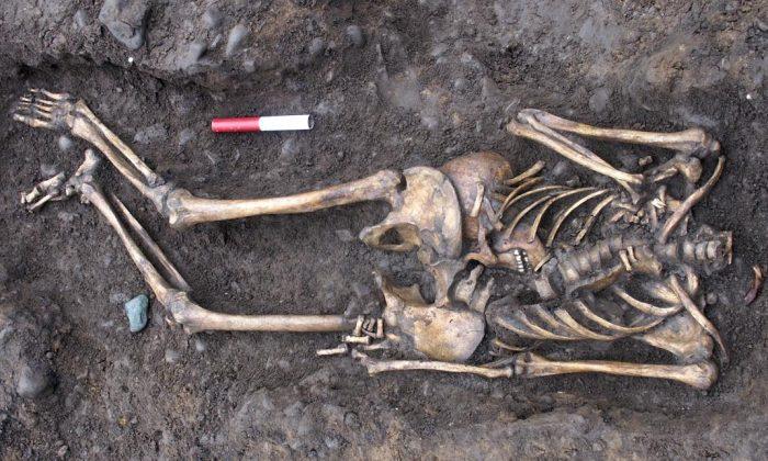(York Archaeological Trust)
