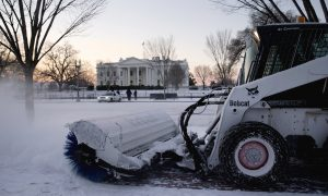 The Latest on Winter Storm Jonas: Many in DC Area Stay Home; Rail Ridership Down