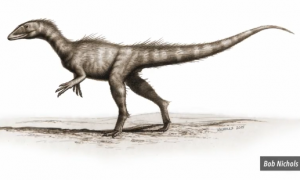 'Oldest Known Jurassic Dinosaur' Found in Wales (Video)