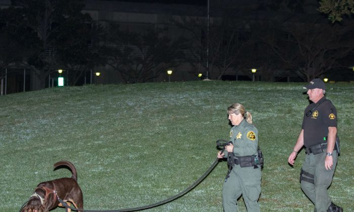 Orange County sheriff's deputies and a search dog investigate early Saturday morning, Jan. 23, 2016, after three jail inmates charged with violent crimes escaped from Central Men's Jail in Santa Ana, Calif. (AP Photo/Kevin Warn)