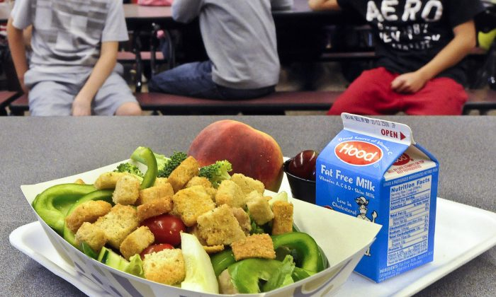FILE - This Sept. 11, 2012 file photo shows a healthy chicken salad school lunch, prepared under federal guidelines, sitting on display at the cafeteria at Draper Middle School in Rotterdam, N.Y.  (AP Photo/Hans Pennink, File)