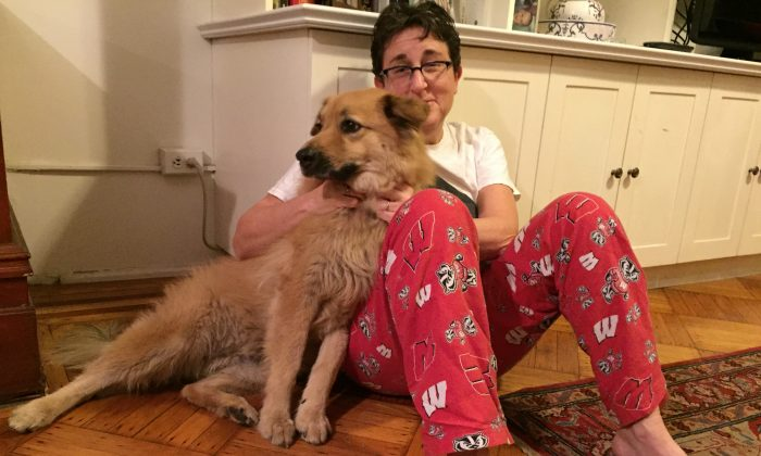 Penny, a mixed-breed rescue dog, poses with her owner, Margery Cooper, in Brooklyn on Tuesday, Feb. 2, 2016 in New York.  Cooper's previous dog died of complications from Lyme disease and she is vigilant about checking Penny for ticks. Experts say climate change has increased the prevalence of fleas, ticks and heartworm disease for pets in the U.S. (AP Photos/Beth J. Harpaz)
