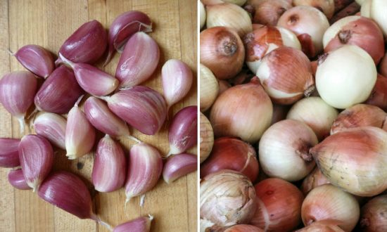 Are Leftover Onions Poisonous? Viral Warning Calls It A Sponge for