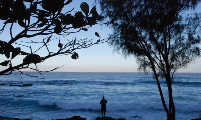 A man watches the ocean near Waimea Bay, Wednesday, Feb. 10, 2016 near Haleiwa, Hawaii. Throngs of spectators packed the beach before dawn and elite surfers descended on Oahu's North Shore, as anticipation built for a big-wave surfing competition last held six years ago. But the towering waves required for the event were a no-show, and as the sun came up Wednesday organizers called it off hours before it was supposed to begin. (AP Photo/Caleb Jones)
