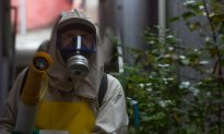 Monsanto Denies Claims It's Responsible for Spread of Zika Virus