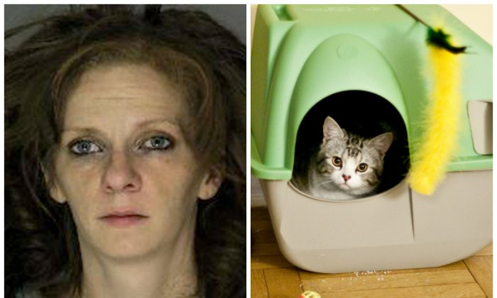 Left: This undated photo provided by Pittsburgh Department of Public Safety shows Melissa Santoro. Santoro was arrested Thursday, Feb. 11, 2016, for four recent store robberies, two of them on Tuesday, Feb. 9, 2016. Police say Santoro told police she needed money for dog food and kitty litter and she wasn't especially successful, netting less than $300 in the heists. (Pittsburgh Department of Public Safety via AP) Right: (Tom Thai/CC BY 2.0)