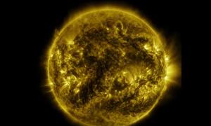Watch: One Year Time-lapse of Sun Showing its Corona Plasma