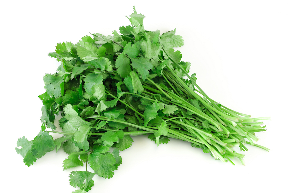 The Two Best Herbs for Lead Poisoning
