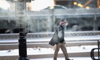 Yes, Cold Weather Can Make You Sick – Scientists Finally Confirm What We All Knew