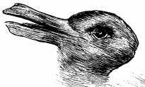 Do You See a Rabbit or a Duck in This Drawing From 1892?