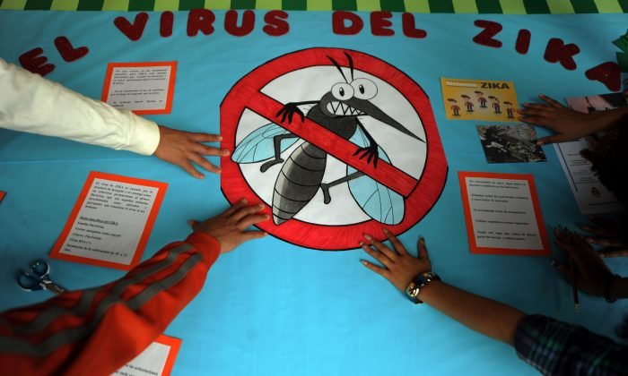 Pedagogy students of the National Autonomous University of Honduras (UNAH) make posters as they start a campaign to prevent Zika virus in Tegucigalpa on February 12, 2016. (ORLANDO SIERRA/AFP/Getty Images)