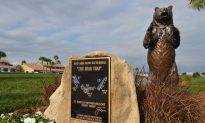 With Start of PGA's Florida Swing 'Bear Trap' Awaits Golfers at Honda Classic