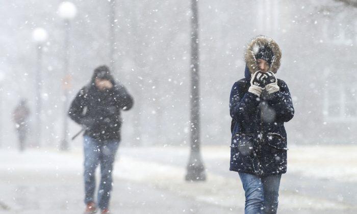 University of Illinois student Charmaine Espinosa bundles up as she walks to class through falling snow on the UI campus in Urbana, Ill., on Wednesday, Feb. 24, 2016. (John Dixon/The News-Gazette via AP)