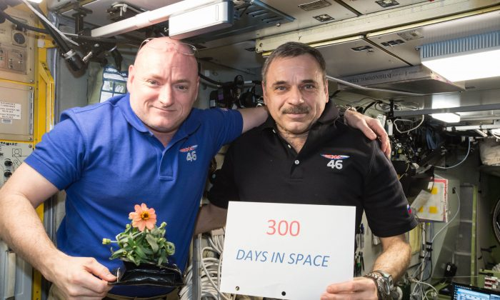One-year mission crew members Scott Kelly of NASA (L) and Mikhail Kornienko of Roscosmos celebrate their 300th consecutive day in space, on Jan. 21, 2016. (NASA via AP)
