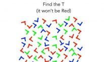 Can You Find the 'T' in This Puzzle?
