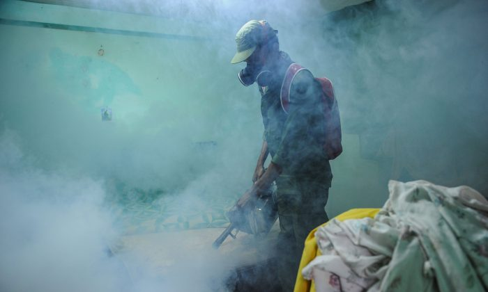 A member of the Cuban army fumigates against the Aedes aegypti mosquito to prevent the spread of zika, chikungunya and dengue, in Havana, on February 23, 2016. (YAMIL LAGE/AFP/Getty Images)