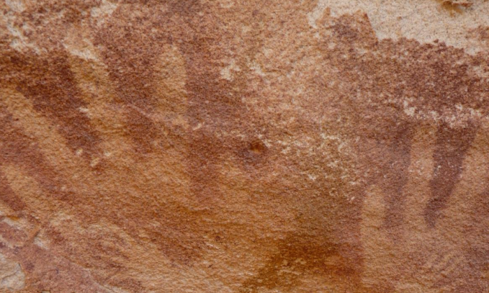 A portion of the rock shows tiny handprints, which researchers now believe were made by lizards as opposed to humans. (Emmanuelle Honoré)