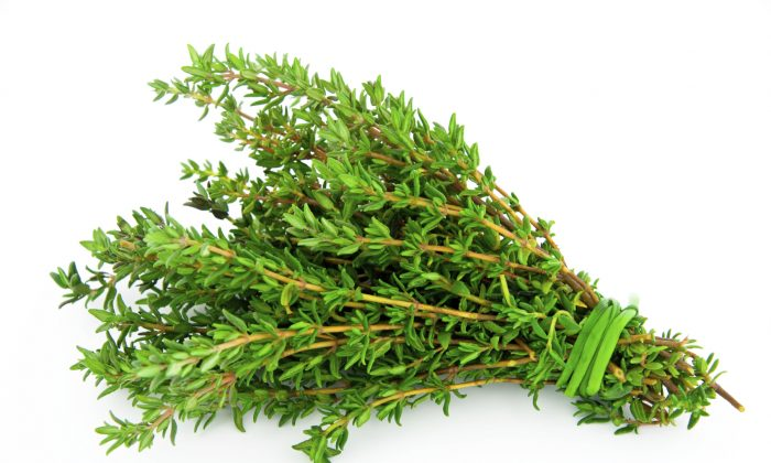 Image result for thyme