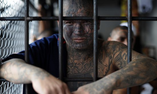 MS-13 Gang Member Sentenced to 20 Years for Machete Attack