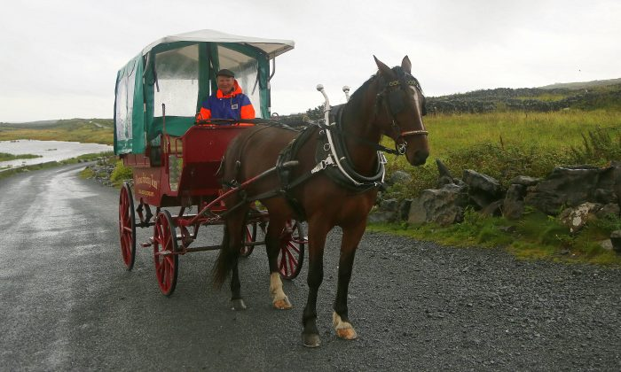 This Sept. 13, 2015 photo shows a pony-and-trap awaiting its rider on Inishmore in the Aran Islands in Ireland. (Michelle Locke via AP)