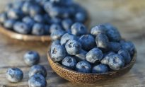 Study Finds One Cup of Blueberries per Day Lowers Risk for Cardiovascular Disease