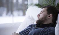 Could Humans Hibernate?