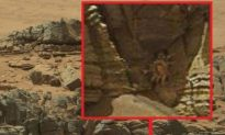 'Space Crab' Captured in Mars Photo Probably Just Pareidolia