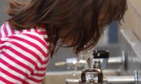 Newark Tests Children After Finding High Lead Levels in School Water