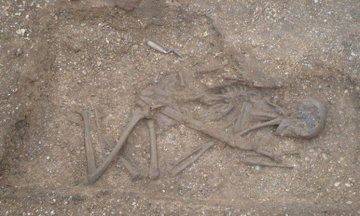 The Pocklington speared corpse burial under excavation. (Peter Halkon)