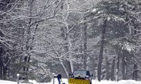 Many Underwhelmed by Northeast's Mild Spring Snowstorm