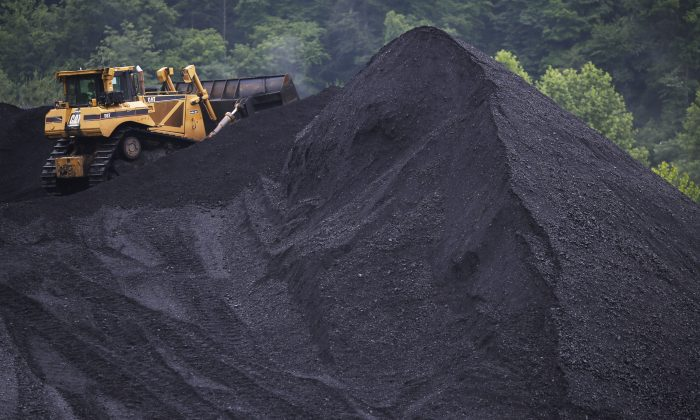 A bulldozer operates atop a coal mound at the CCI Energy Slones Branch Terminal in Shelbiana, Ky., on June 3, 2014. (Luke Sharrett/Getty Images)