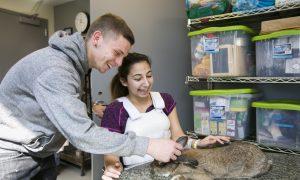 Cuddling Rabbits Is Good Medicine at NYU's Rehab Center