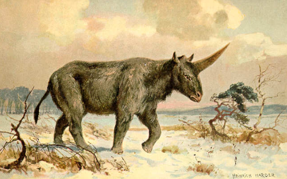 Heinrich Harder's painting of the so-called Siberian Unicorn. (Public Domain)