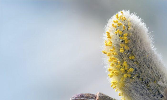 (Maren Winter/iStock)
