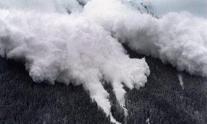 Avalanche Kills Skier in Northern Italy: Alpine Rescue