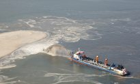 Palm Beach Reef Suffers Rampant Damage