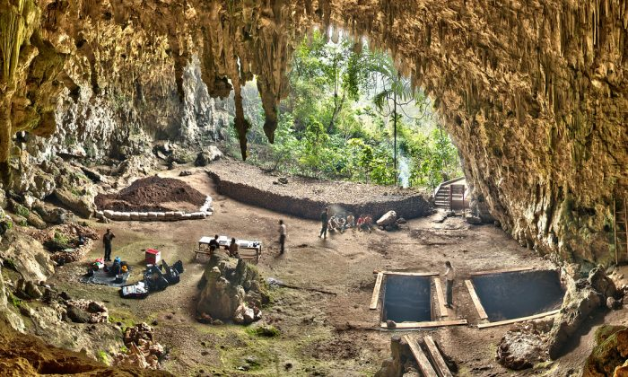 Excavations in Liang Bua, a limestone cave on the Indonesian island of Flores. (Smithsonian Digitization Program Office Liang Bua Team)