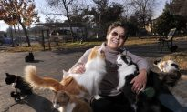 California Woman Gives up Home to Care for Thousands of Cats