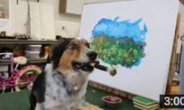Amazing Trainer Guides Dog to Paint Landscape Picture