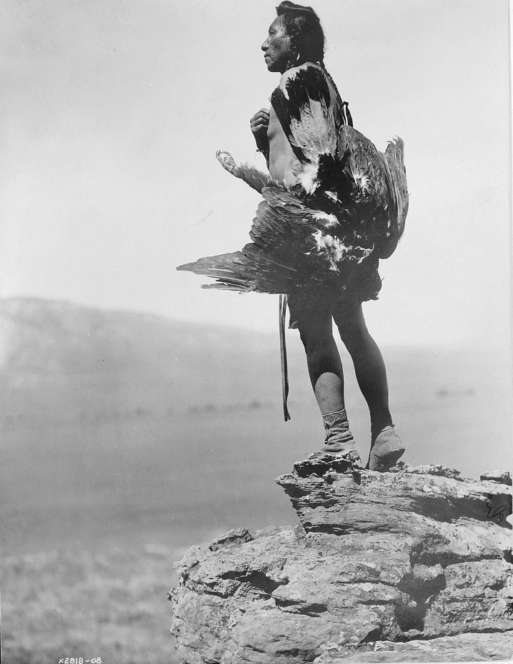 The eagle catcher, c1908. (Edward S. Curtis/Library of Congress)