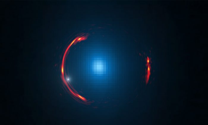Composite image of the gravitational lens SDP.81 showing the distorted image of the more distant galaxy (red arcs) and the nearby lensing galaxy (blue center object). (Y. Hezaveh/Stanford; ALMA/NRAO/ESO/NAOJ; NASA/ESA Hubble Space Telescope)