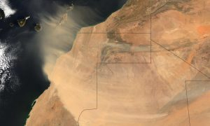What Dust From the Sahara Does to You and the Planet