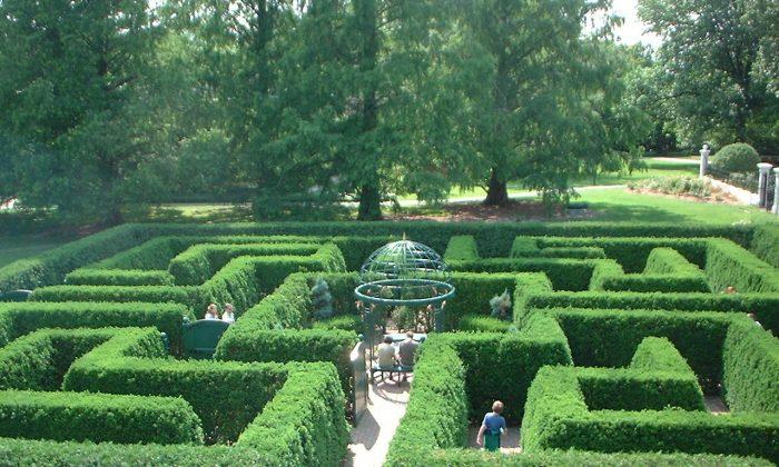 Victorian Maze at Missouri Botanical Garden in St. Louis on June 1, 2003. (Public Domain)