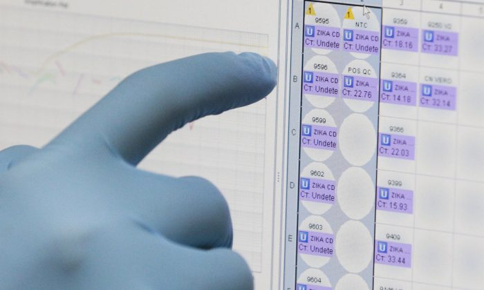A medical researcher uses a monitor that shows the results of blood tests for various diseases, including Zika, at the Gorgas Memorial laboratory in Panama City on Feb. 4, 2016. On April 28, 2016, the U.S. Food and Drug Administration (FDA) authorized Quest Diagnostics to offer the first commercial test for the Zika virus in the United States. Previously, Zika tests were only available through a handful of government-designated laboratories. Quest said the commercial test could be available as early as the first week of May. (AP Photo/Arnulfo Franco)