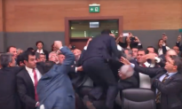 Video: Brawl Breaks Out in Turkish Parliament During Meeting on Constitutional Changes