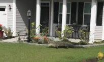 Video: Alligator Climbs Up Front Door of South Carolina Home