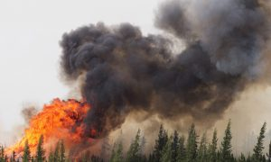 Fort McMurray Wildfire Doubles in Size in 36 Hours, Continues to Grow