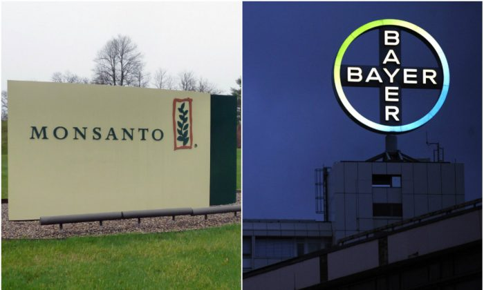 Left: The entrance sign is seen at the headquarters of Monsanto, at Creve Coeur (St. Louis), Missouri, on April 7, 2014. (Juliette Michel/AFP/Getty Images); Right: A logo of German pharmaceutical giant Bayer in Berlin on Nov. 24, 2010. (John Macdougall/AFP/GettyImages)