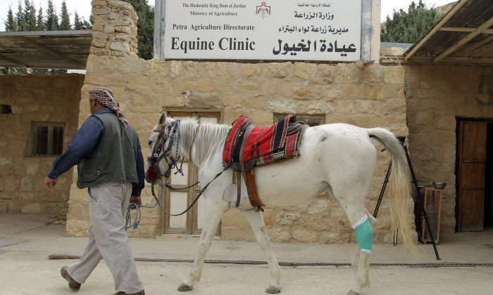 A man and his horse, used for transporting, walk past an equine clinic at the ancient city of Petra in Jordan on March 25th, 2015. Four Paws and the Jordanian Princess Alia Foundation (PAF) work for the improvement of the health and working conditions of horses and donkeys in Petra, providing veterinary treatment and training for the owners. (KHALIL MAZRAAWI/AFP/Getty Images)