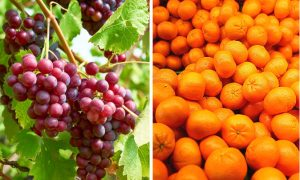 Orange-Grape Pills May Lower Blood Sugar